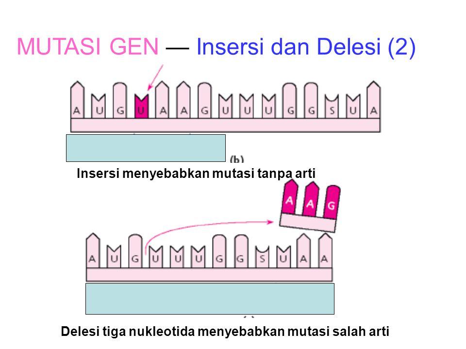 MUTASI GEN — Insersi dan Delesi (2)