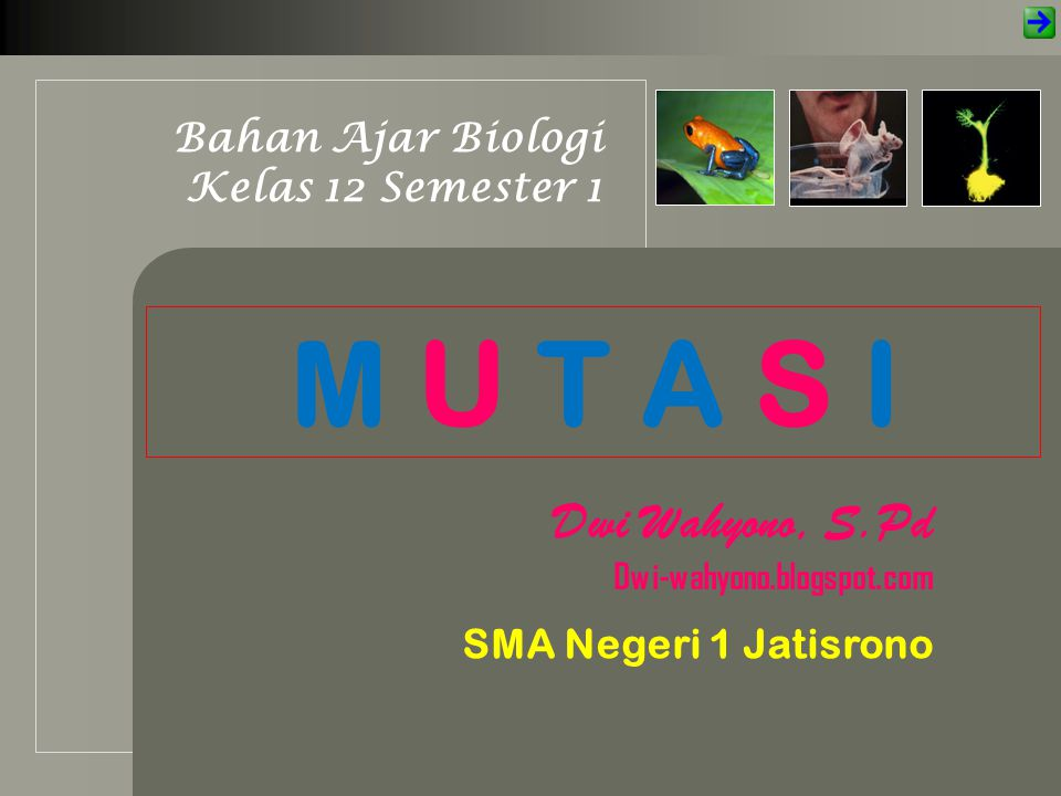 M U T A S I Dwi Wahyono, S.Pd Bahan Ajar Biologi Kelas 12 Semester 1