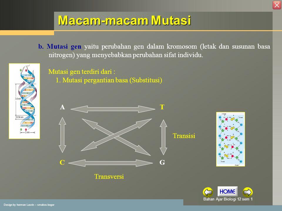 Macam-macam Mutasi b. Mutasi gen yaitu perubahan gen dalam kromosom (letak dan susunan basa nitrogen) yang menyebabkan perubahan sifat individu.