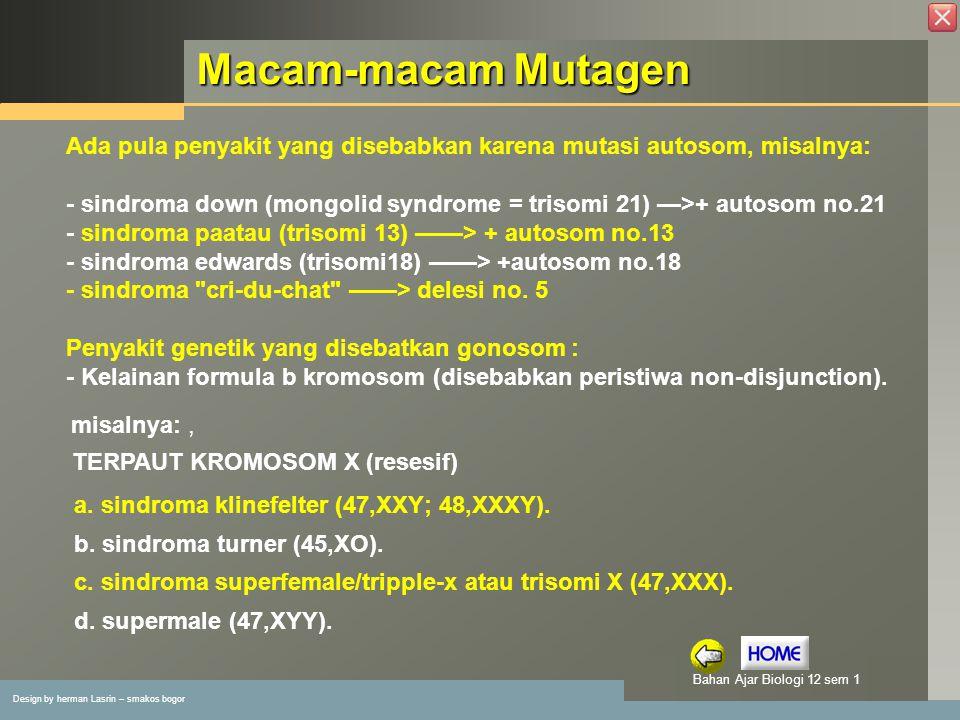 Macam-macam Mutagen