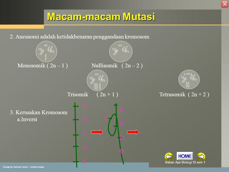 Macam-macam Mutasi 2. Aneusomi adalah ketidakbenaran penggandaan kromosom. Monosomik ( 2n – 1 ) Nullisomik ( 2n – 2 )