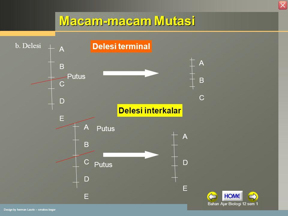 Macam-macam Mutasi Delesi terminal Delesi interkalar b. Delesi A B A C