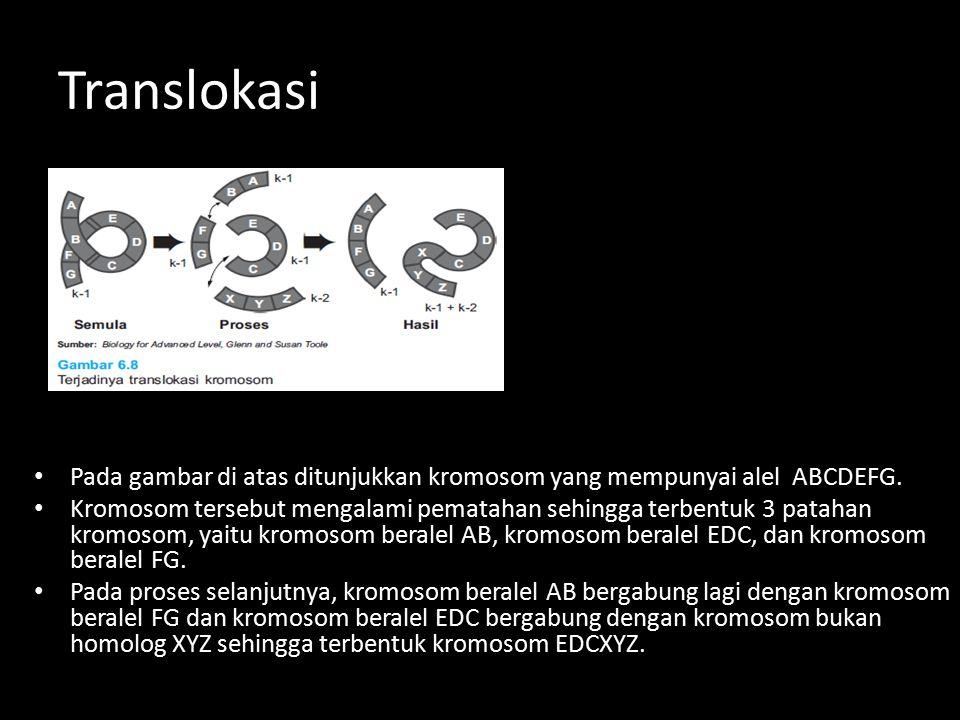 Translokasi Pada gambar di atas ditunjukkan kromosom yang mempunyai alel ABCDEFG.