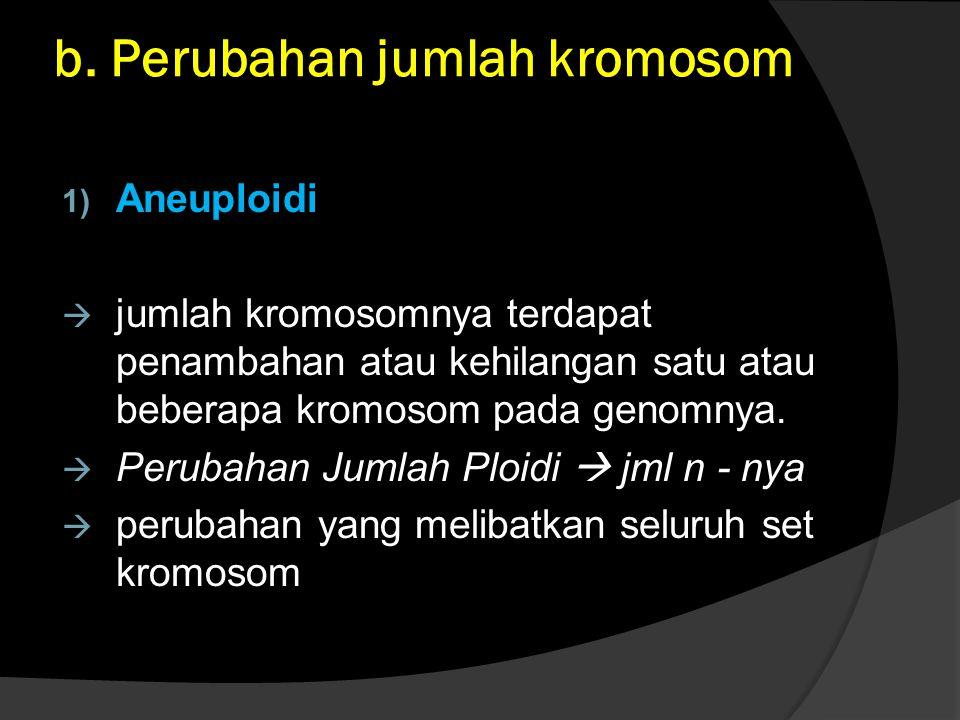 b. Perubahan jumlah kromosom