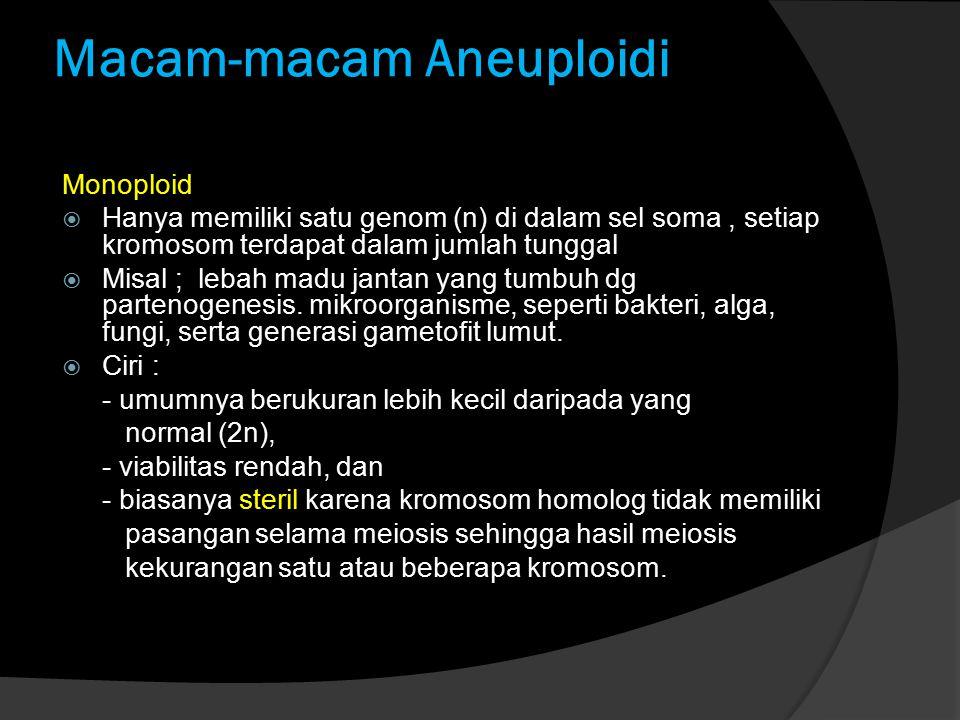 Macam-macam Aneuploidi