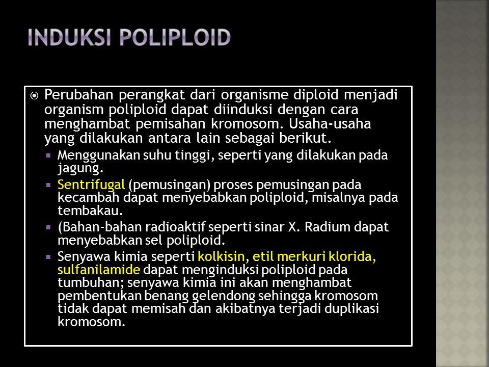 Induksi poliploid
