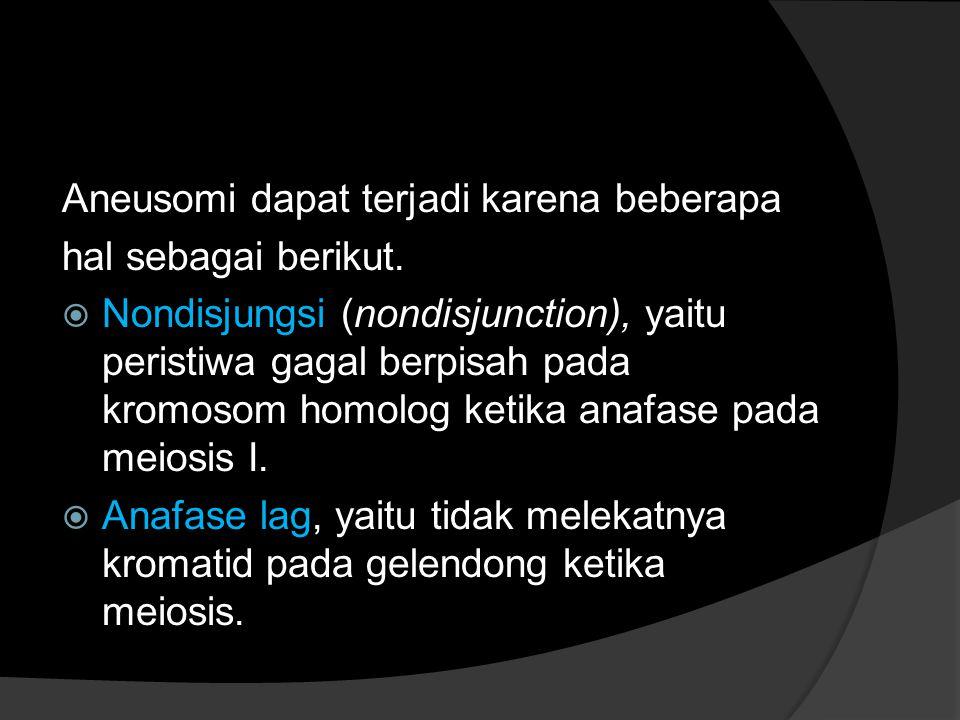 Aneusomi dapat terjadi karena beberapa