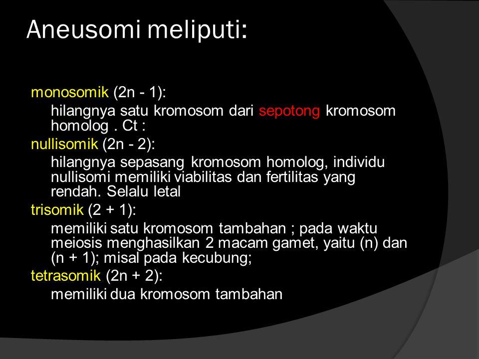 Aneusomi meliputi: