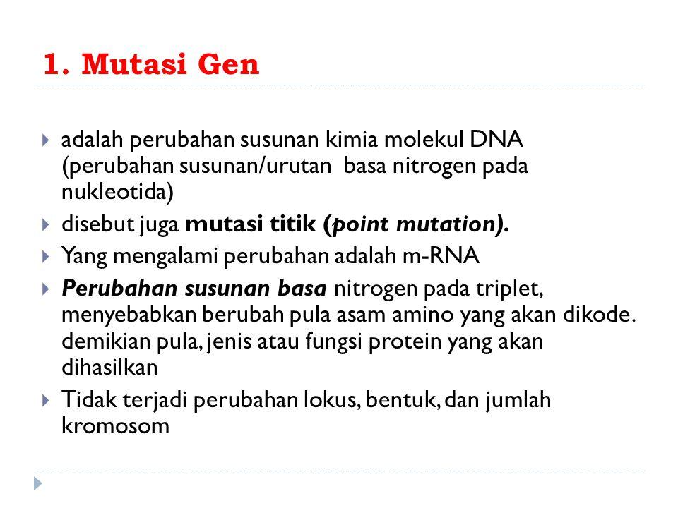 1. Mutasi Gen adalah perubahan susunan kimia molekul DNA (perubahan susunan/urutan basa nitrogen pada nukleotida)