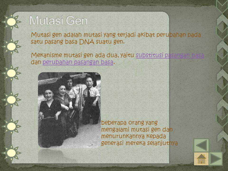 Mutasi Gen Mutasi gen adalah mutasi yang terjadi akibat perubahan pada satu pasang basa DNA suatu gen.
