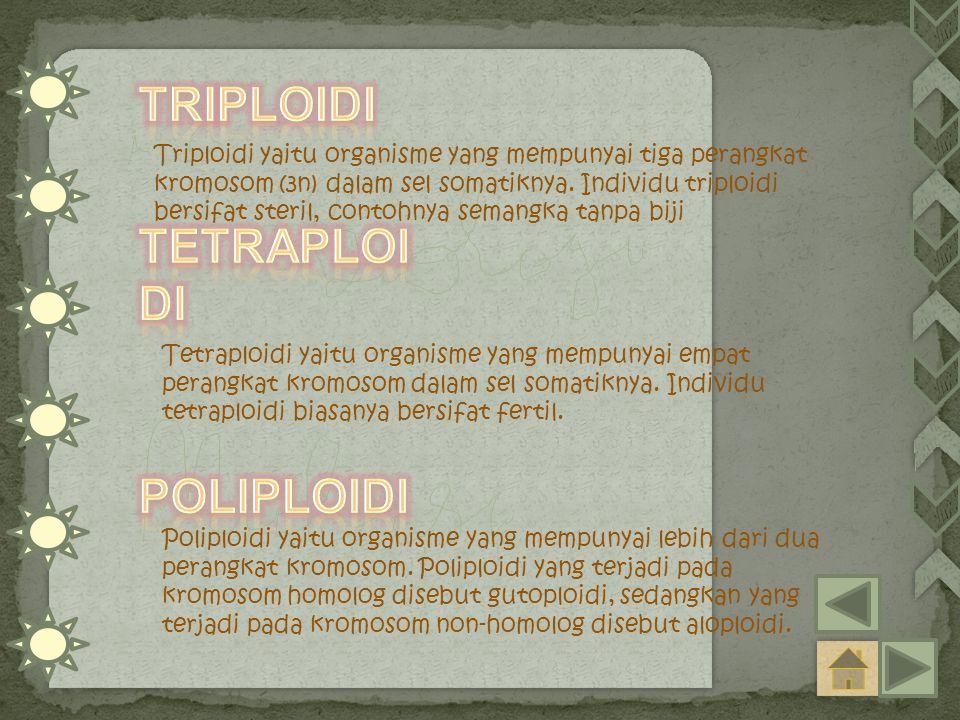Triploidi tETRAploidi poliploidi