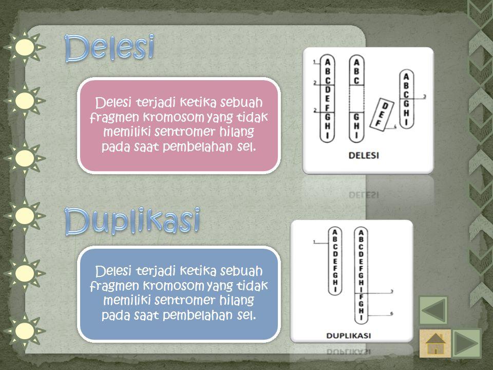 Delesi Delesi terjadi ketika sebuah fragmen kromosom yang tidak memiliki sentromer hilang pada saat pembelahan sel.