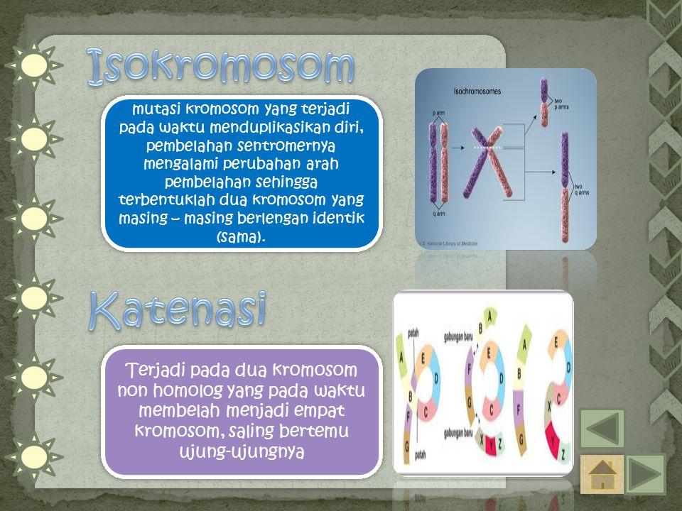 Isokromosom