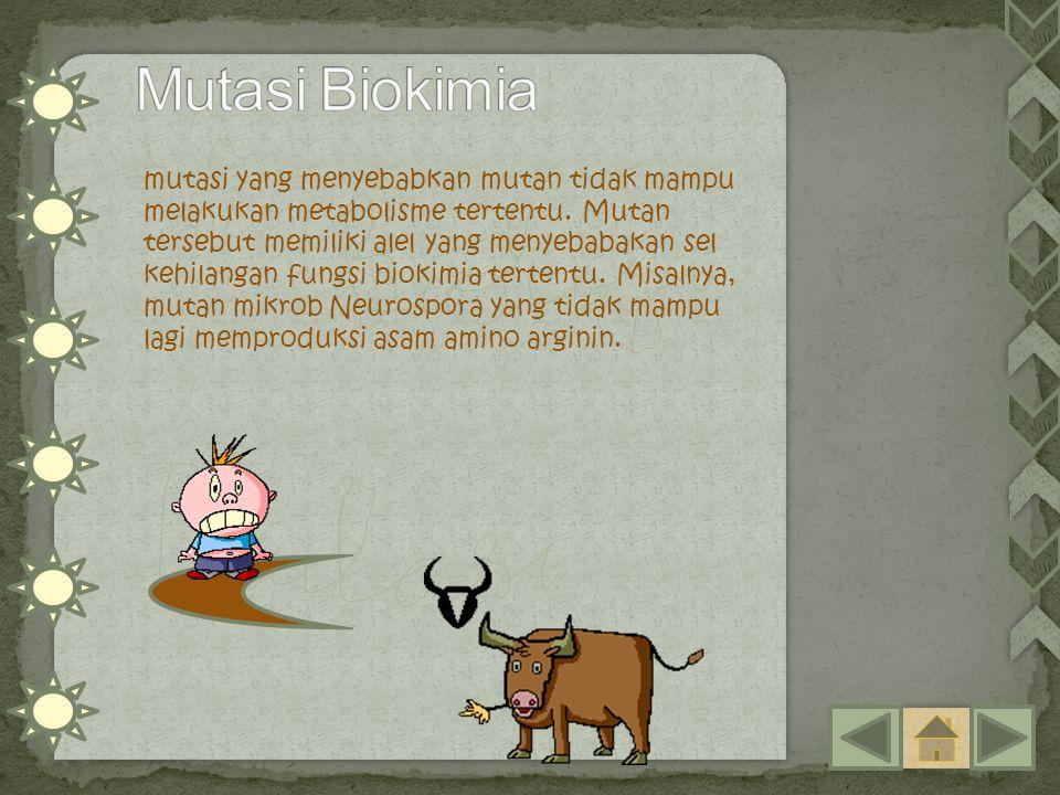 Mutasi Biokimia