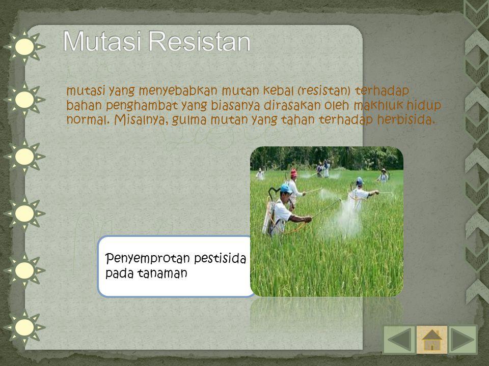 Mutasi Resistan