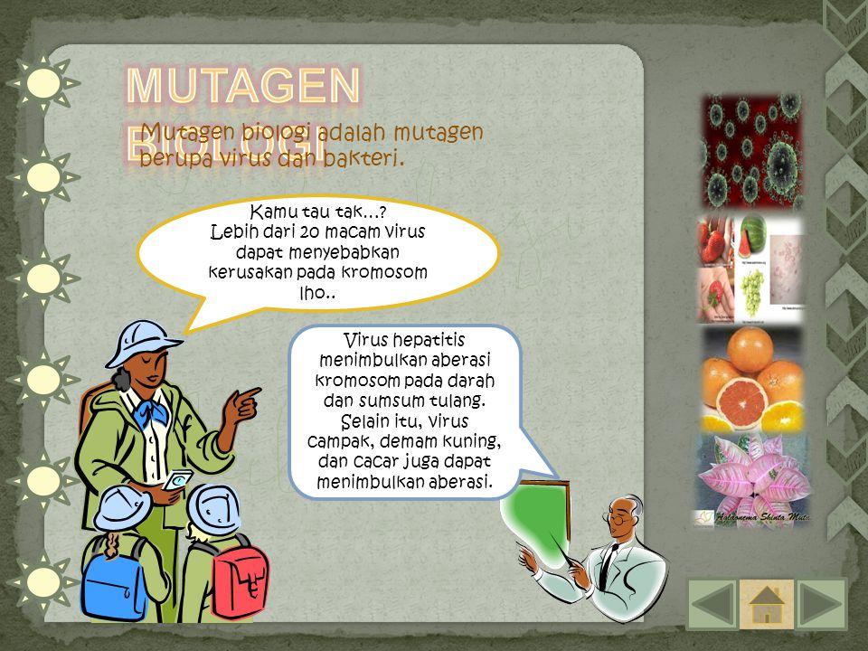 Mutagen Biologi Mutagen biologi adalah mutagen berupa virus dan bakteri. Kamu tau tak…