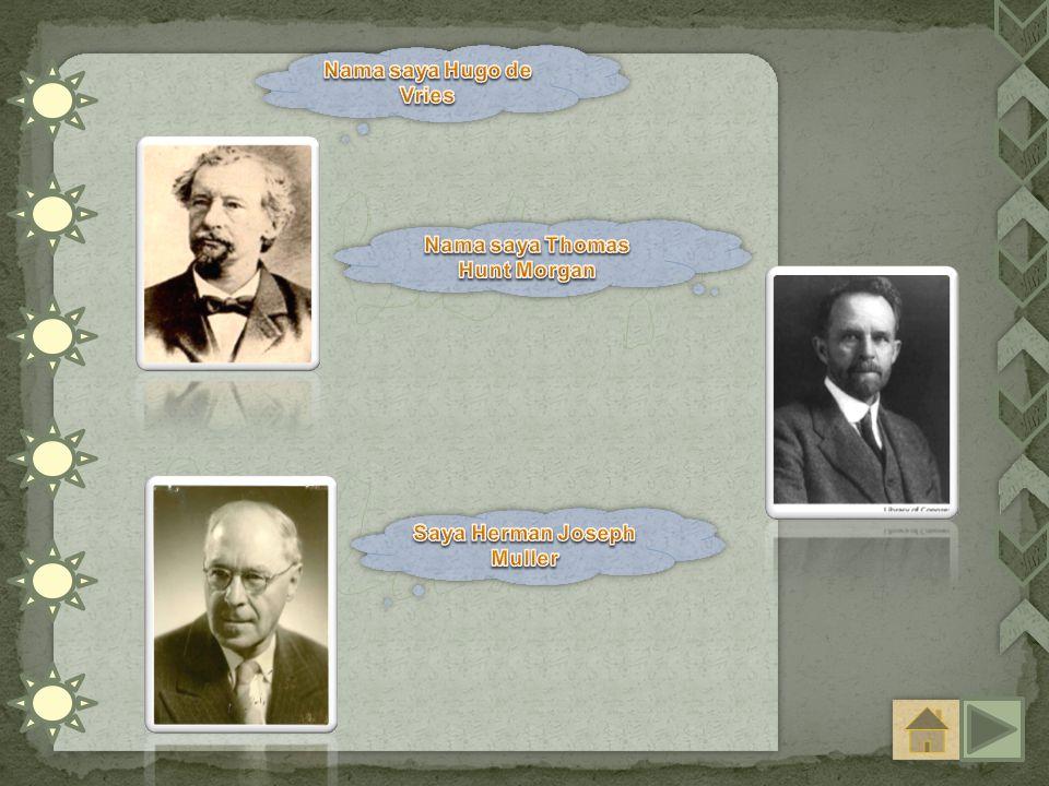 Nama saya Thomas Hunt Morgan Saya Herman Joseph Muller