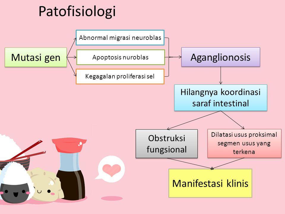 Patofisiologi Mutasi gen Aganglionosis Manifestasi klinis