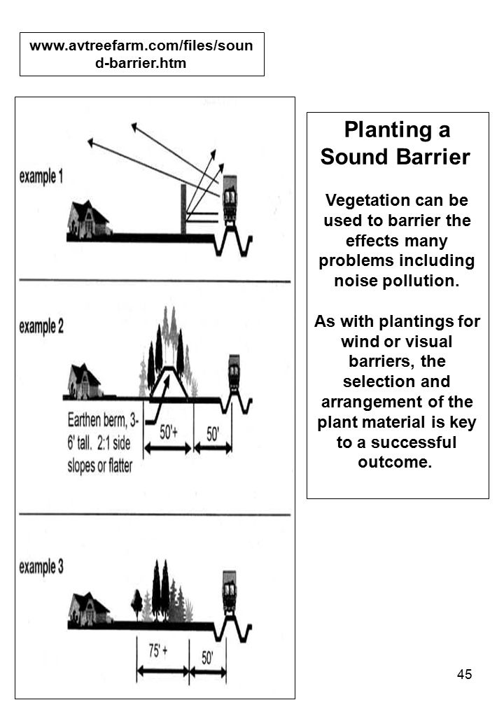 Planting a Sound Barrier