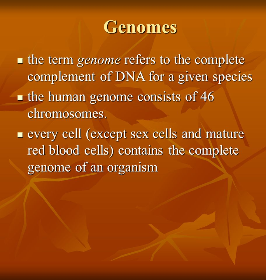 Genomes the term genome refers to the complete complement of DNA for a given species. the human genome consists of 46 chromosomes.