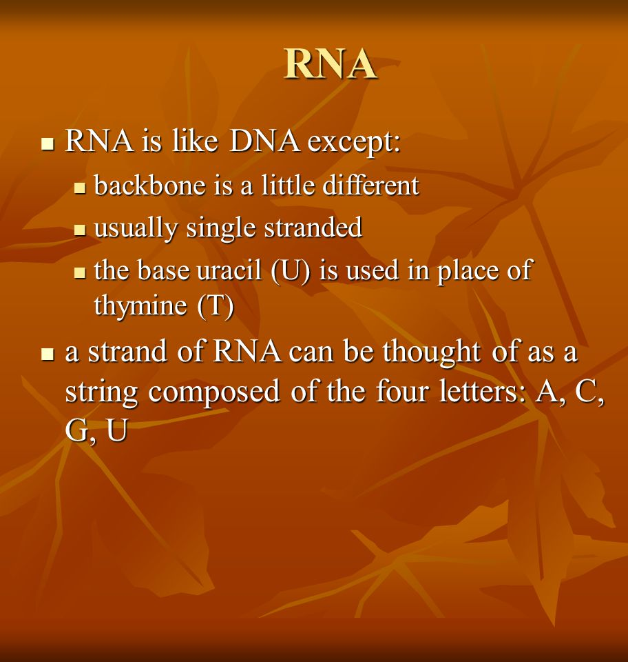 RNA RNA is like DNA except: