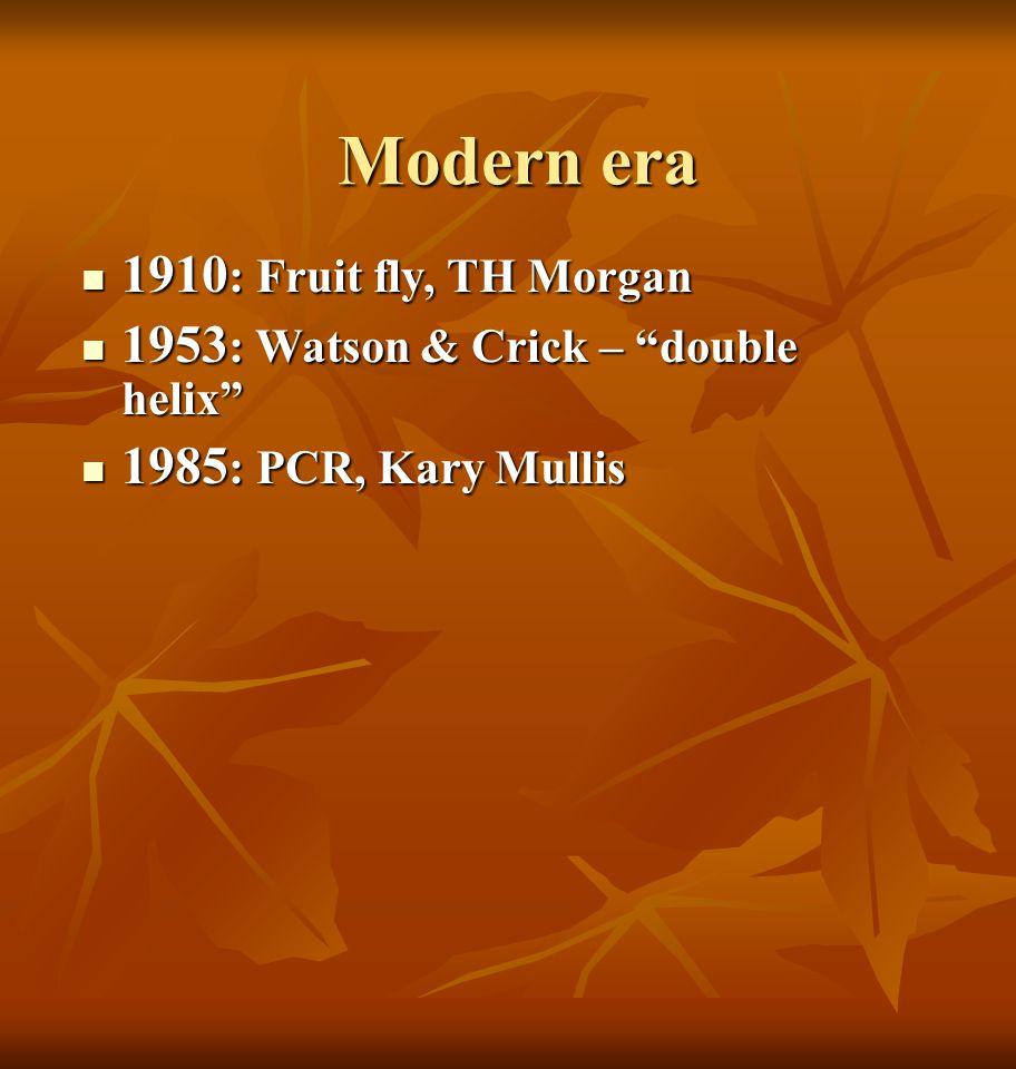 Modern era 1910: Fruit fly, TH Morgan