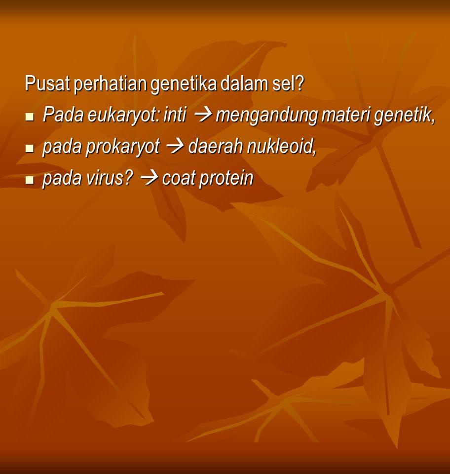 Pusat perhatian genetika dalam sel
