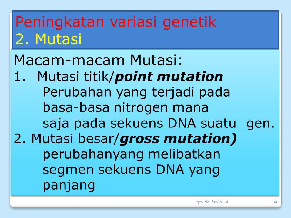 Peningkatan variasi genetik 2. Mutasi