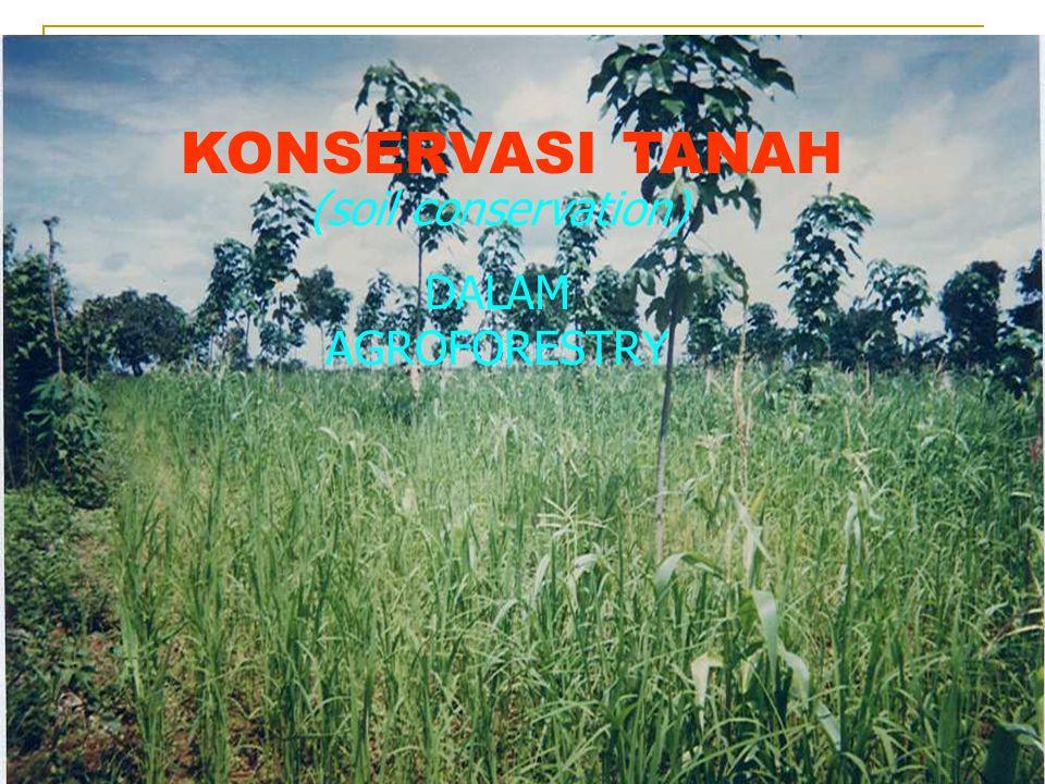 PENDAHULUAN Apa itu konservasi tanah Apa itu agroforestry