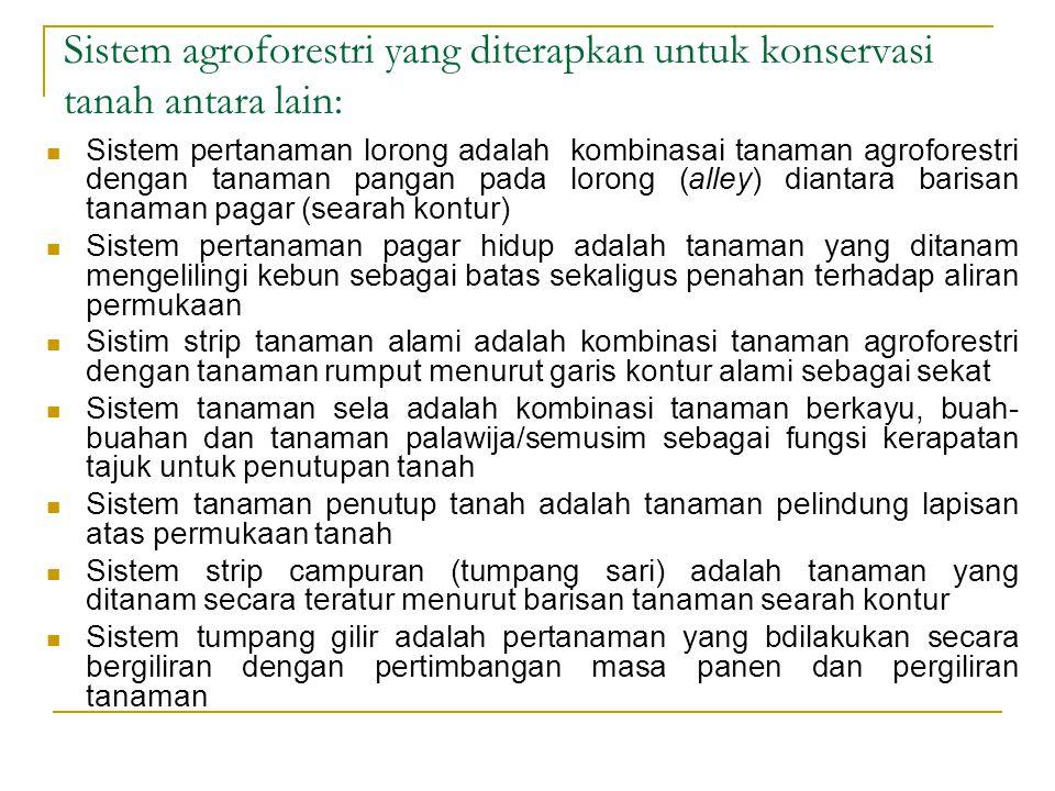Sistem agroforestry harus dibarengi dengan konservasi tanah/lahan teknik sipil berupa
