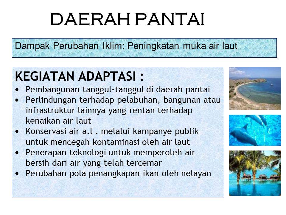 DAERAH PANTAI KEGIATAN ADAPTASI :