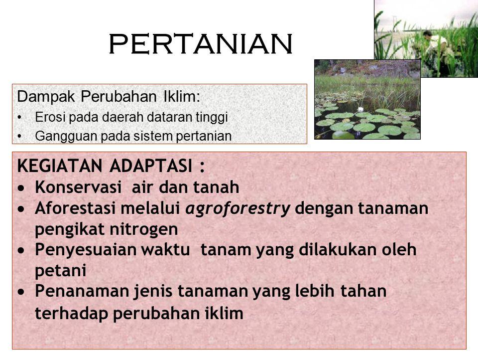 PERTANIAN KEGIATAN ADAPTASI : Konservasi air dan tanah