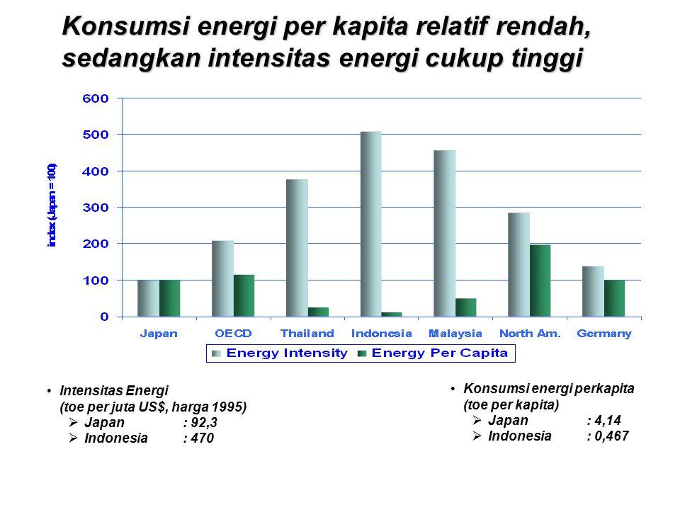 Konsumsi energi per kapita relatif rendah, sedangkan intensitas energi cukup tinggi