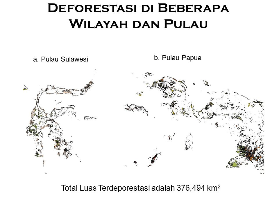 Deforestasi di Beberapa Wilayah dan Pulau