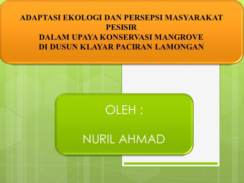 OLEH : NURIL AHMAD ADAPTASI EKOLOGI DAN PERSEPSI MASYARAKAT PESISIR