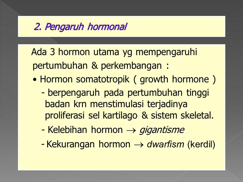 2. Pengaruh hormonal