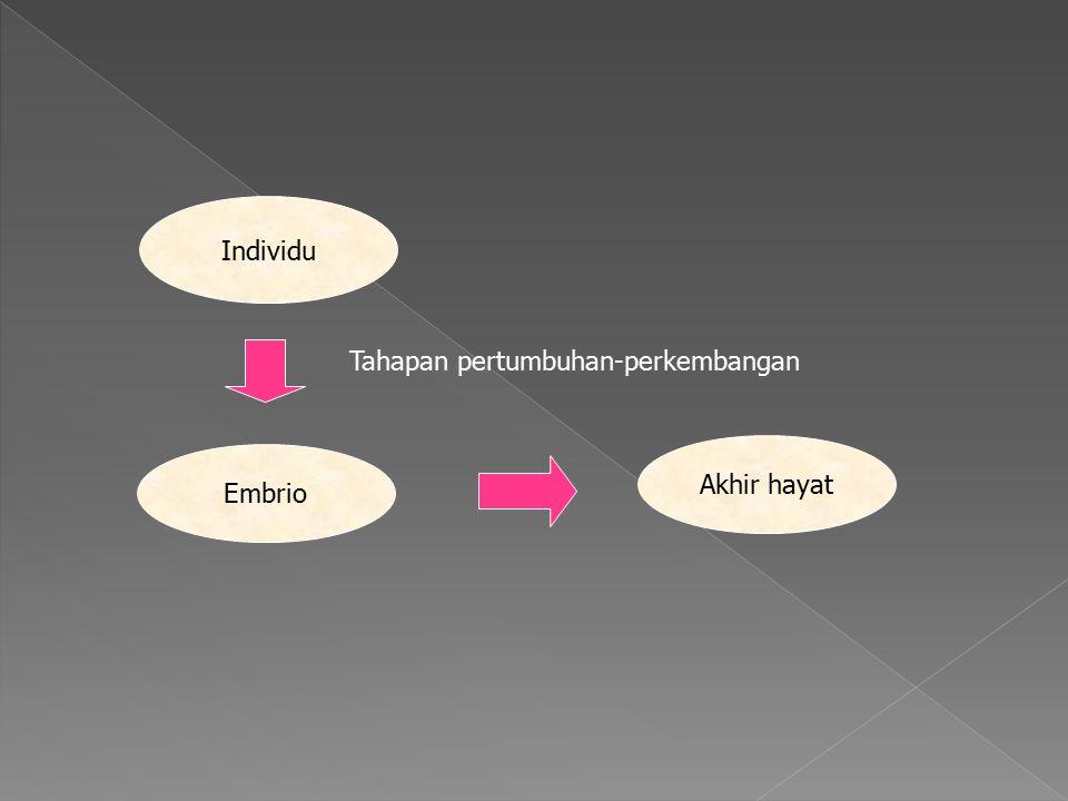 Individu Tahapan pertumbuhan-perkembangan Akhir hayat Embrio