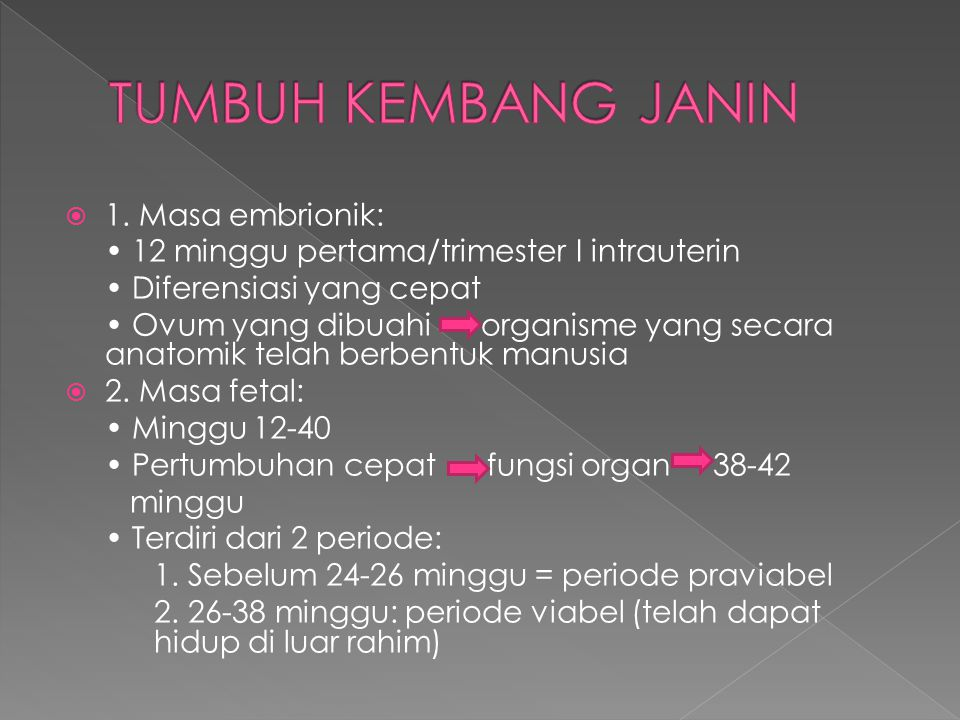 TUMBUH KEMBANG JANIN 1. Masa embrionik: