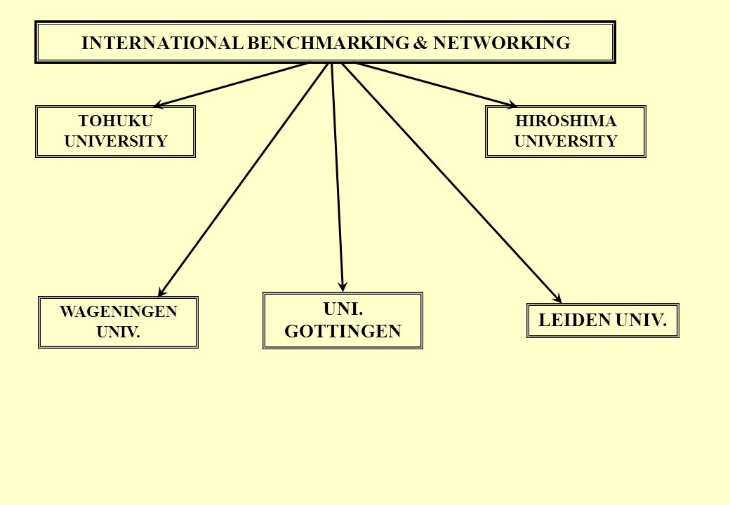 INTERNATIONAL BENCHMARKING & NETWORKING
