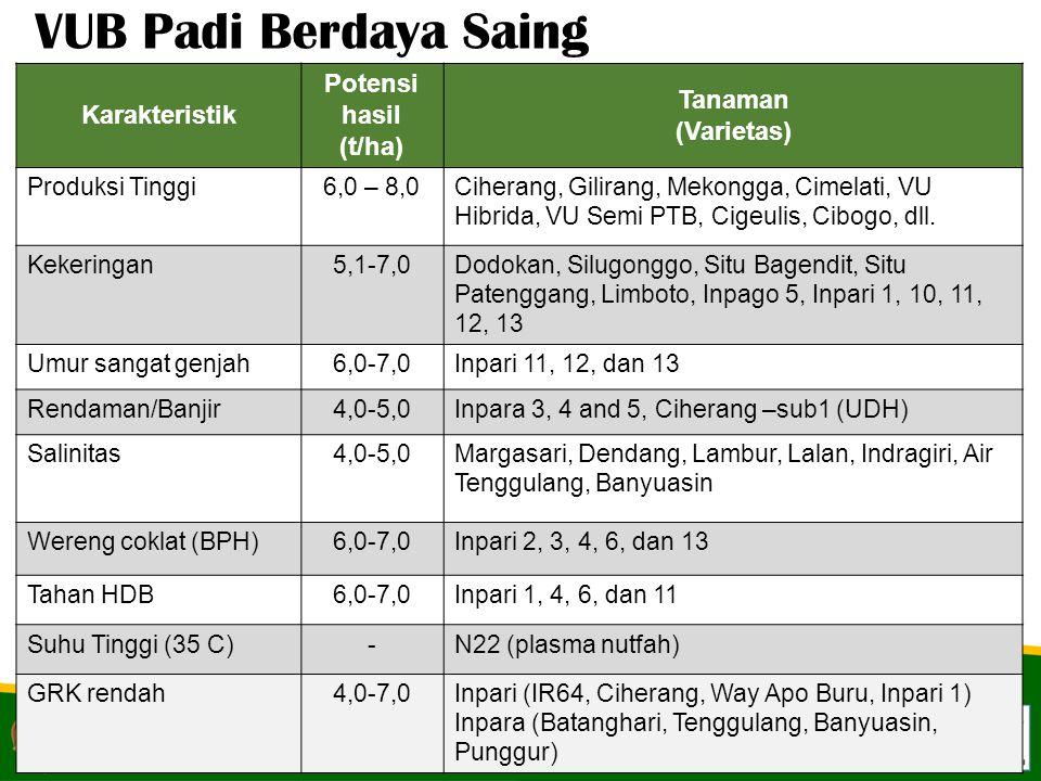 VUB Padi Berdaya Saing Potensi hasil Tanaman Karakteristik (Varietas)