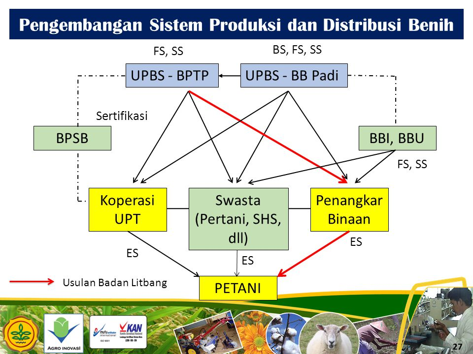 Pengembangan Sistem Produksi dan Distribusi Benih