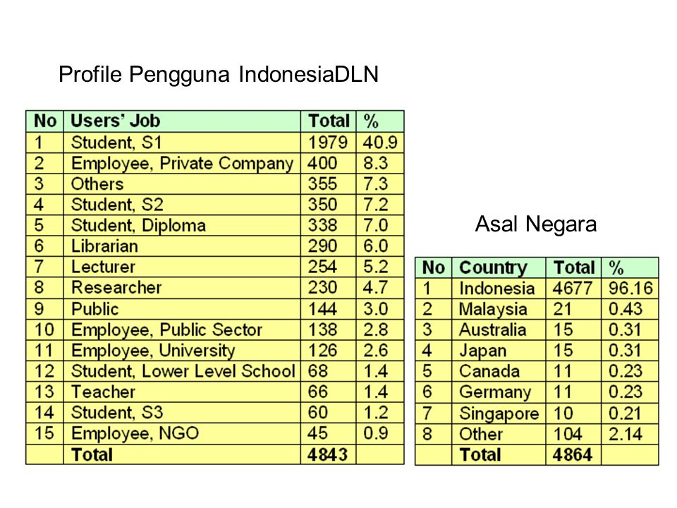 Profile Pengguna IndonesiaDLN