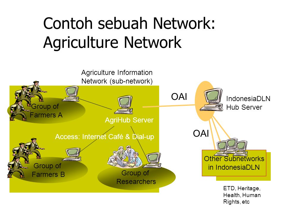 Contoh sebuah Network: Agriculture Network