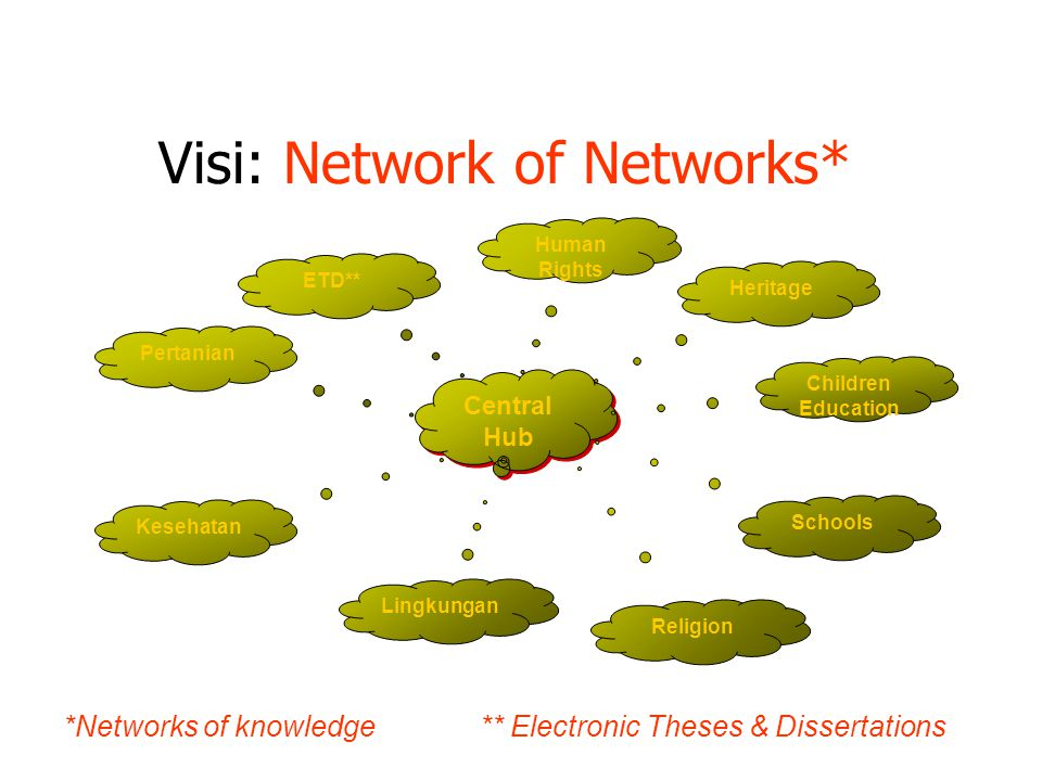 Visi: Network of Networks*
