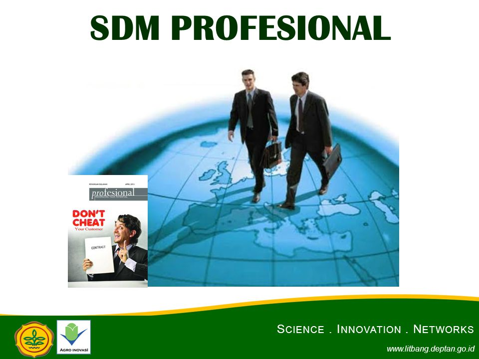 SDM PROFESIONAL Science . Innovation . Networks