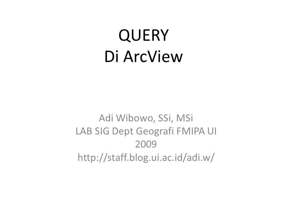 LAB SIG Dept Geografi FMIPA UI