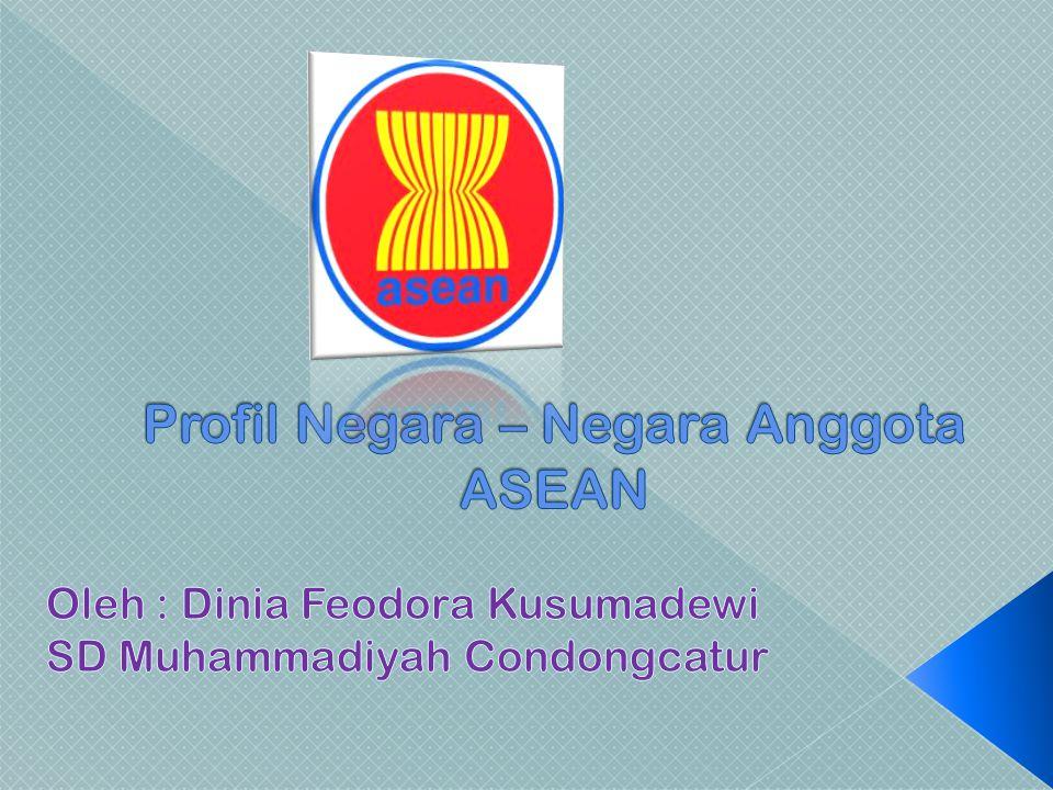 Profil Negara – Negara Anggota ASEAN