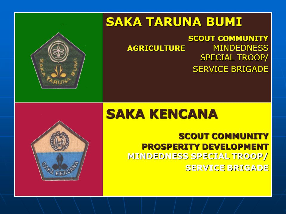 SCOUT COMMUNITY PROSPERITY DEVELOPMENT MINDEDNESS SPECIAL TROOP/