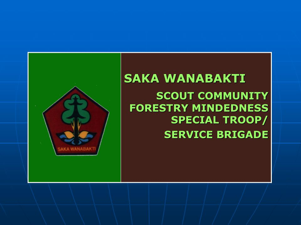 SCOUT COMMUNITY FORESTRY MINDEDNESS SPECIAL TROOP/