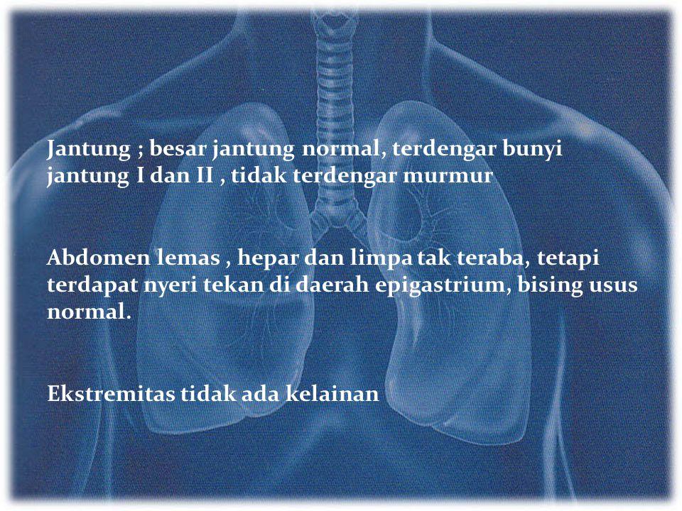 Jantung ; besar jantung normal, terdengar bunyi jantung I dan II , tidak terdengar murmur